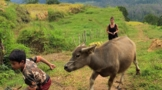 sulawesi-tourist-attractions